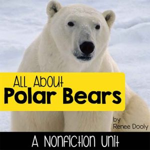 all-about-polar-bears-cover-sq